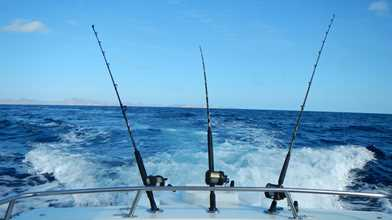 Mad Dash Shared Sport Fishing