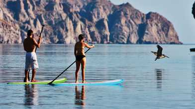 Paddle Board Gear Rentals