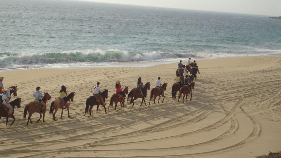 Horseback Riding Migriño
