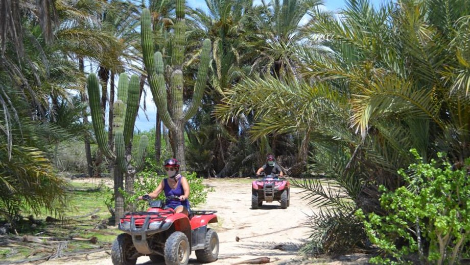 Migriño Desert and Beach ATV