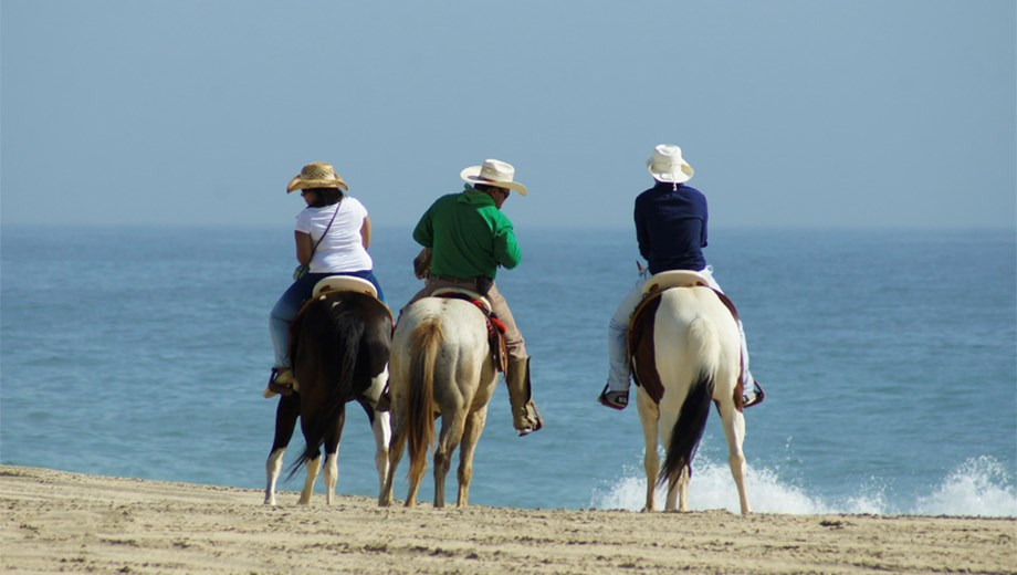 Beach & Desert Horseback Riding