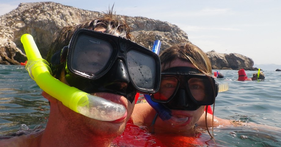 Guided Snorkel